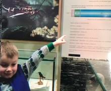Year 2 science trip biology wo 2